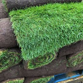 An example of the fresh turf that we sell.